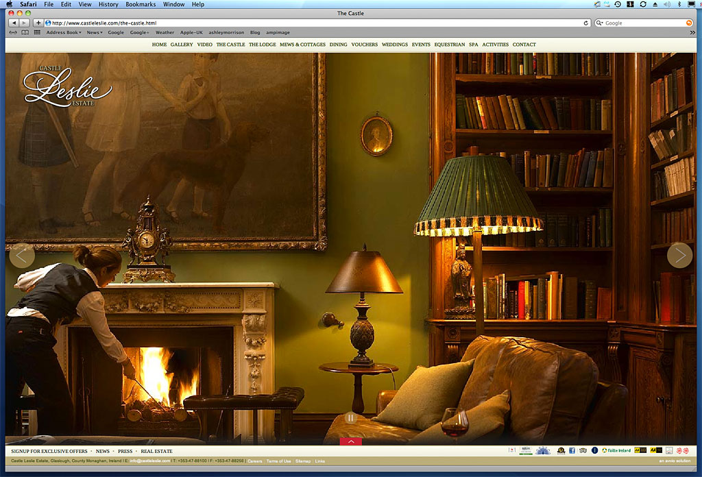 Screen shot showing how our image was used on the Library in The Castle page on Castle Leslie Estate's website.